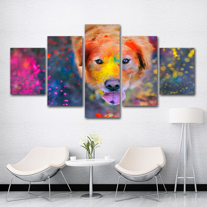 Dog With Colors